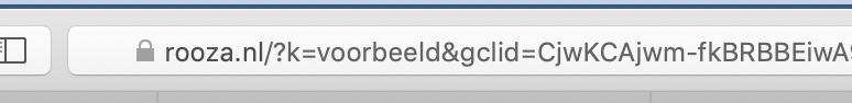 [PLUGIN] Zoekwoord van Google Ads op landingpage